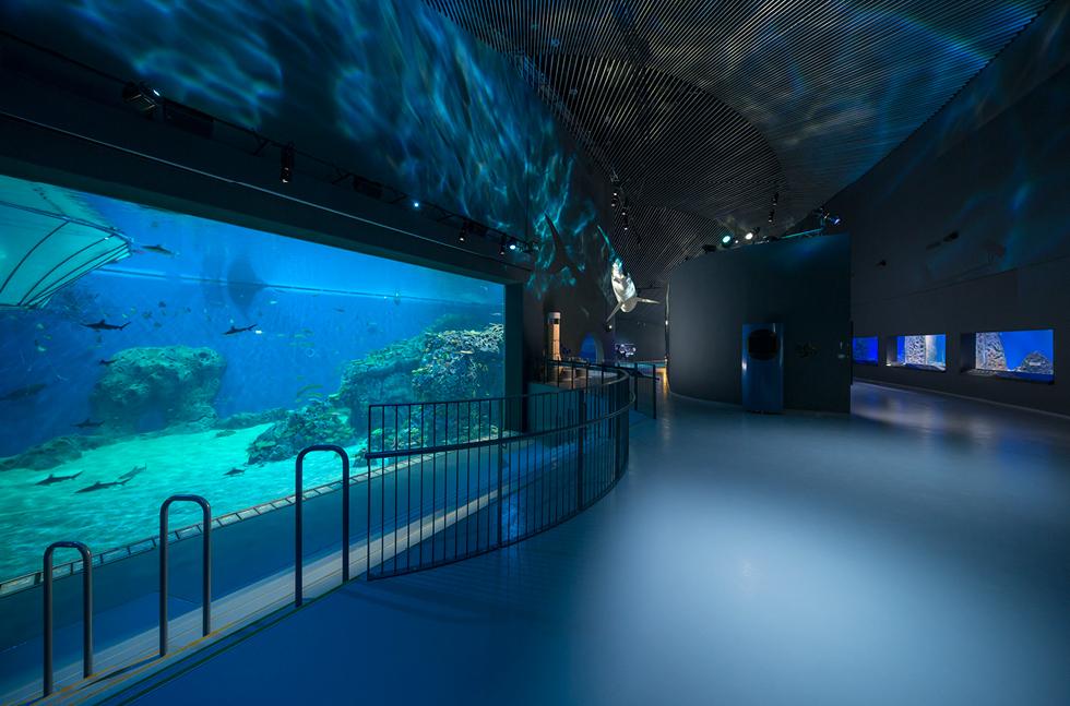 national aquarium denmark flowcrete major projects national aquarium ...